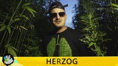 HERZOG - BLÄTTER, DIE DIE WELT BEDEUTEN - HALT DIE FRESSE NR. 368 (OFFIC...