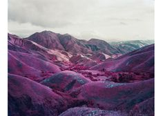 L'expo la plus intrigante : « Infra, photographies de l'est du Congo, 2010-2012 » de Richard Mosse au Centre Culturel Irlandais http://www.vogue.fr/culture/le-guide-du-week-end/diaporama/le-guide-du-week-end-special-photographie/10581/image/644667#!l-expo-la-plus-intrigante-infra-photographies-de-l-est-du-congo-2010-2012-de-richard-mosse-au-centre-culturel-irlandais