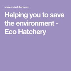 Helping you to save the environment - Eco Hatchery
