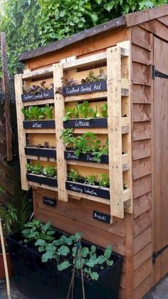 Vertical garden made with palette – Garden Types - How to Make Gardening Vertical Garden Design, Herb Garden Design, Vertical Gardens, Vegetable Garden Design, Back Gardens, Garden Art, Vegetable Gardening, Gardening Hacks, Rocks Garden
