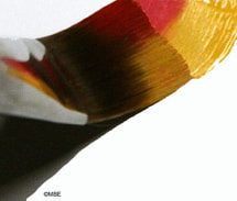 Decorative Painting Loading a Brush with Two Colors - Image © Marion Boddy-Evans