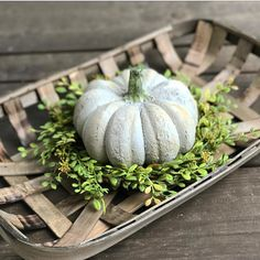 How great does this tobacco basket look with our boxwood ring and newest pumpkin addition! These pumpkins have a distressed vintage look to them and great texture! They really pop on top of the faux floral ring! This would make a great centerpiece on a table, coffee table, or buffet! AVAILABLE IN OUR SHOP! (If interested in this larger size boxwood ring we can order those for you) . . #faux #tobaccobasket #pumpkins #centerpiece #fall #falldecor #falldecorating #autumn #falldisplay #fallfun…