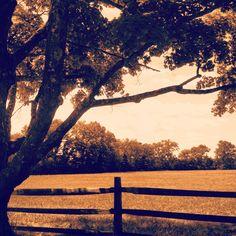 Borderland State Park #KeriSawyerPhotography