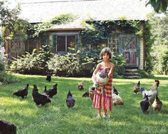 One day we will have fresh eggs and chicken pets. My kids will be thrilled
