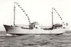 Caribe II