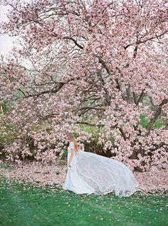 Dreamy Bridal Portraits Among the Magnolias in Virginia Wedding Shoot, Wedding Couples, Wedding Bride, Wedding Posing, 1920s Wedding, Bridal Shoot, Spring Wedding Flowers, Wedding Colors, Easter Wedding Ideas