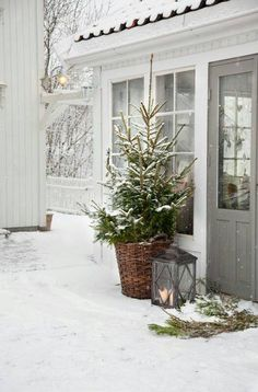 Snowy Exterior With Christmas Tree