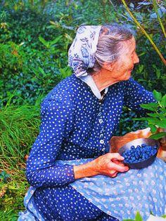 Berries and Tasha Tudor