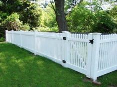 Landscaping And Outdoor Building , Picket Backyard Fence Designs : Vinyl Picket . Vinyl Picket Fence, White Picket Fence, White Fence, Cedar Fence, Picket Fences, Backyard Fences, Fenced In Yard, Yard Fencing, Fence Landscaping
