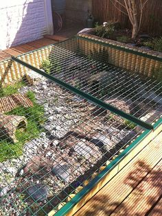 Schildis Anti-predator mesh over tortoise habitat reptiles Antipredator desert reptile terrarium Habitat mesh schildis Tortoise Tortoise House, Tortoise Habitat, Tortoise Table, Turtle Habitat, Outdoor Tortoise Enclosure, Turtle Enclosure, Rabbit Enclosure, Turtle Homes, Sulcata Tortoise
