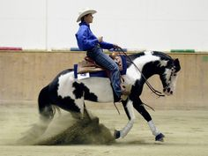 Reining is what I dream to do! Horse Hay, Cutting Horses, Reining Horses, Western Riding, All About Horses, Horse Saddles, Western Saddles, Barrel Horse, Western Pleasure
