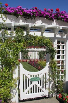 Garden Gate - this is very Cape Cod-ish and very pretty, especially with all the flowers & flora betwixt & between