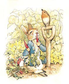 Peter_Rabbit_Image_-_Preferred_Image