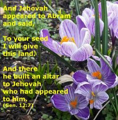 Gen. 12:7 And Jehovah appeared to Abram and said, To your seed I will give this land. And there he built an altar to Jehovah who had appeared to him. See more at: www.agodman.com