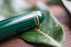 Aurora 88 Green with Fine Flex 14kt gold nib. Pin for later.