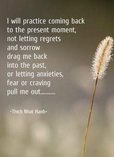 Thich Nhat Hanh Yep this ones a doozy Buddhist Wisdom, Buddhist Quotes, Spiritual Quotes, Wisdom Quotes, Life Quotes, Buddhism Zen, Buddhist Prayer, Karma Quotes, Attitude Quotes