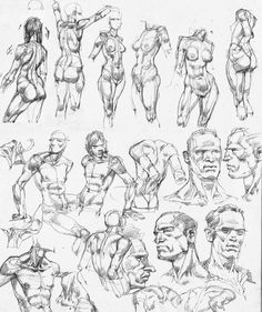 Gesture Torso Head Pelvis Shoulders Form Construction Male Female. anatomy sketches  by Luftenstain