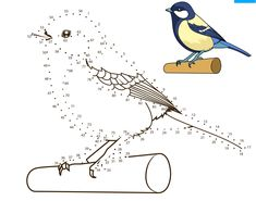 Great Tit dot to dot from Birds category. Select from 31983 printable crafts of cartoons, nature, animals, Bible and many more. Montessori Activities, Activities For Kids, Crafts For Kids, Printable Crafts, Printables, Dots Free, Great Tit, Dot Day, Connect The Dots