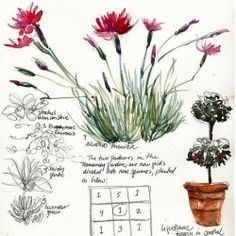 HOW TO; Create Your Garden Journal         ~Suggested journaling methods
