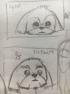 How to draw a shih tzu - part 2