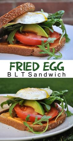 , bacon, tomato, spicy mayo sauce, and fried egg all in one sandwich ...