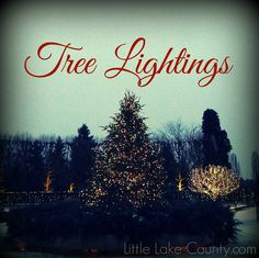 The holiday season is back, and what better way to kick it off than attending a festive tree lighting ceremony. In the event of inclement weather, please make sure to check with local municipalitie...