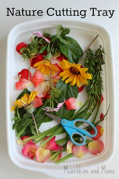 Cutting Tray - Munchkins and Moms A great way to practice scissor skills with preschoolers using this sensory-rich nature tray!A great way to practice scissor skills with preschoolers using this sensory-rich nature tray! Nature Activities, Spring Activities, Motor Activities, Toddler Activities, Montessori Toddler, Toddler Play, Outdoor Activities, Preschool Garden, Preschool Science