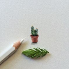 "Teeny hairy cactus, inspired by Emma Rathbone's ""Losing It"". I painted a miniature for each of the books released by @riverheadbooks this summer. This is the third one. #riverheadbooks #emmarathbone #losingit"