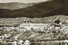 Pohronská Polhora patrí do okresu mesta Brezno, leží na severnom svahu Slovenského rudohoria v pramennej oblasti Rohoznej. Nadmorská výška v strede obce je 618 m.n.m., kataster s rozlohou 3577 ha je v rozpätí nadmorských výšok 600-1439 m.n.m. Pahorkatinný povrch chotára v okolí obce prechádza v južnej časti cez vrchovinu do náhornej vrchoviny, vo východnej časti do hornatiny. Ich podklad tvoria kryštalické bridlice, žuly, na juhu tiež vápence, na severe sopečné horniny, v doline Rohoznej… Paris Skyline, City Photo, Travel, Viajes, Trips, Traveling, Tourism, Vacations