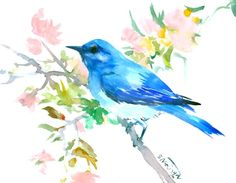 Mountain Bluebird, 10 X 8 in, original watercolor painting by ORIGINALONLY on Etsy