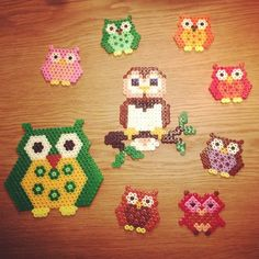 Owls hama perler beads by juliejapjap