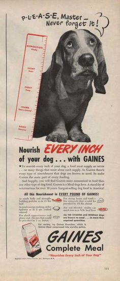 1946 Gaines dogfood ad