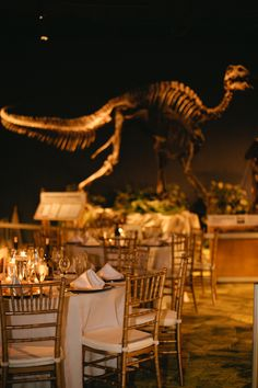 DinoDigs event wedding reception at the Orlando Science Center. Not as creepy as it looks - the wedding we had there turned out so beautiful! www.lifeeventsllc.com