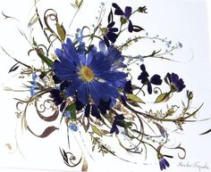 -Nagaoka- ポストカードブルーサイネリア。花びらの薄い可憐なお花。清楚な押し花額絵の作品に仕上げました。その作品をポストカードに創りました。爽やかな風...|ハンドメイド、手作り、手仕事品の通販・販売・購入ならCreema。