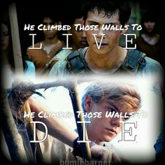 Honestly same newt I'll come the walls to die