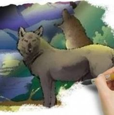 I Love Animals And Nature So The Wild Forest Coloring Books Are An Outdoors Adventure In Pages For Me You Can Color