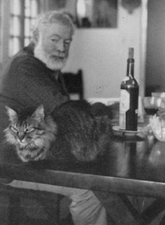 This wine is too good for toast-drinking, my dear. You dont want to mix emotions up with a wine like that. Ernest Hemingway, The Sun Also Rises Ernest Hemingway, Hemingway Cats, Margaux Hemingway, Crazy Cat Lady, Crazy Cats, Celebrities With Cats, Men With Cats, The Sun Also Rises, In Vino Veritas