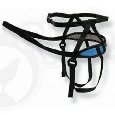 Rock Empire Canicross Lite Waist Belt. Available in Blue or Green. http://www.innerwolf.co.uk/browse-by-sport-activity/running-canicross/rock-empire-lite-waist-belt.html