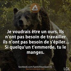 Je voudrais être un ours. Ils n'ont pas besoin de travailler ils n'ont pas besoin de s'épiler… Si quelqu'un t'emmerde, tu le manges. | Saviez-vous que ?