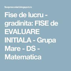 Fise de lucru - gradinita: FISE de EVALUARE INITIALA - Grupa Mare - DS - Matematica