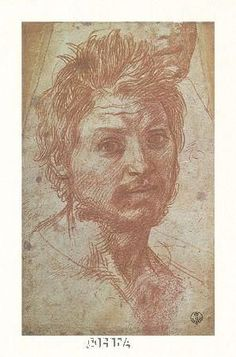Andrea Del Sarto Drawings | Title: Head Of A Young Man Artist: Andrea Del Sarto Item#: 223593 ...