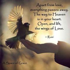 Veien inn til hjertet