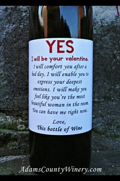 pretty sure this is who i'll be spending my valentine's day with! Funny Valentine Wine Bottle from Adams County Winery. Funny Valentine, Happy Valentines Day, Wine Jokes, Funny Wine, Wine Funnies, Wine Signs, Pub Signs, Vides, In Vino Veritas