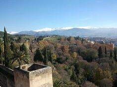 Granada, calle de Elvira,  donde viven las manolas, las que se van a la Alhambra,  las tres y las cuatro solas.  Federico García Lorca
