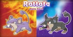 Presentan nueva versión de Rattata para Pokémon Sun y Moon