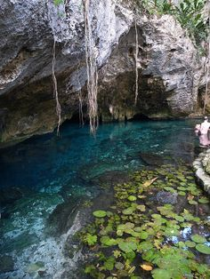 Grand Cenote, Mexico 2013  by chibirock, via Flickr