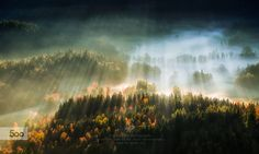in the morning light by Piotr Krol on 500px