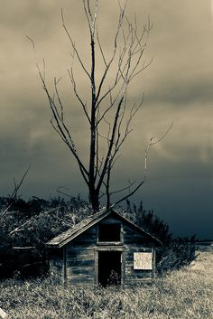 """""""We lived in a one-room, run-down shack..."""""""