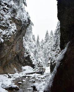Krivánska Malej Fatre - Jánošíkove diery sa nachádzajú v národnej prírodnej rezervácii Rozsutec. Horn, Outdoor, Instagram, Outdoors, Horns, Outdoor Games, The Great Outdoors, Antlers