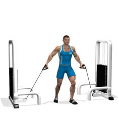 LOW CABLE CROSSOVER INVOLVED MUSCLES DURING THE TRAINING CHEST